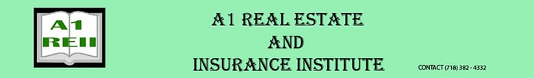 New York Real Estate & Insurance Institute